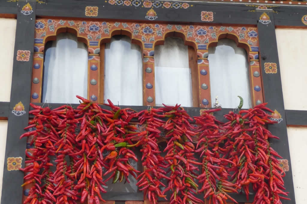Wix Squared Testimonial - Exploring Bhutan